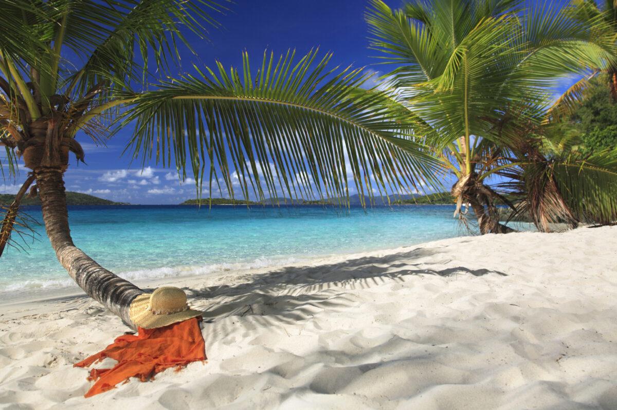 Bermuda & Caribbean Islands: Medical & Dental Symposium at Sea